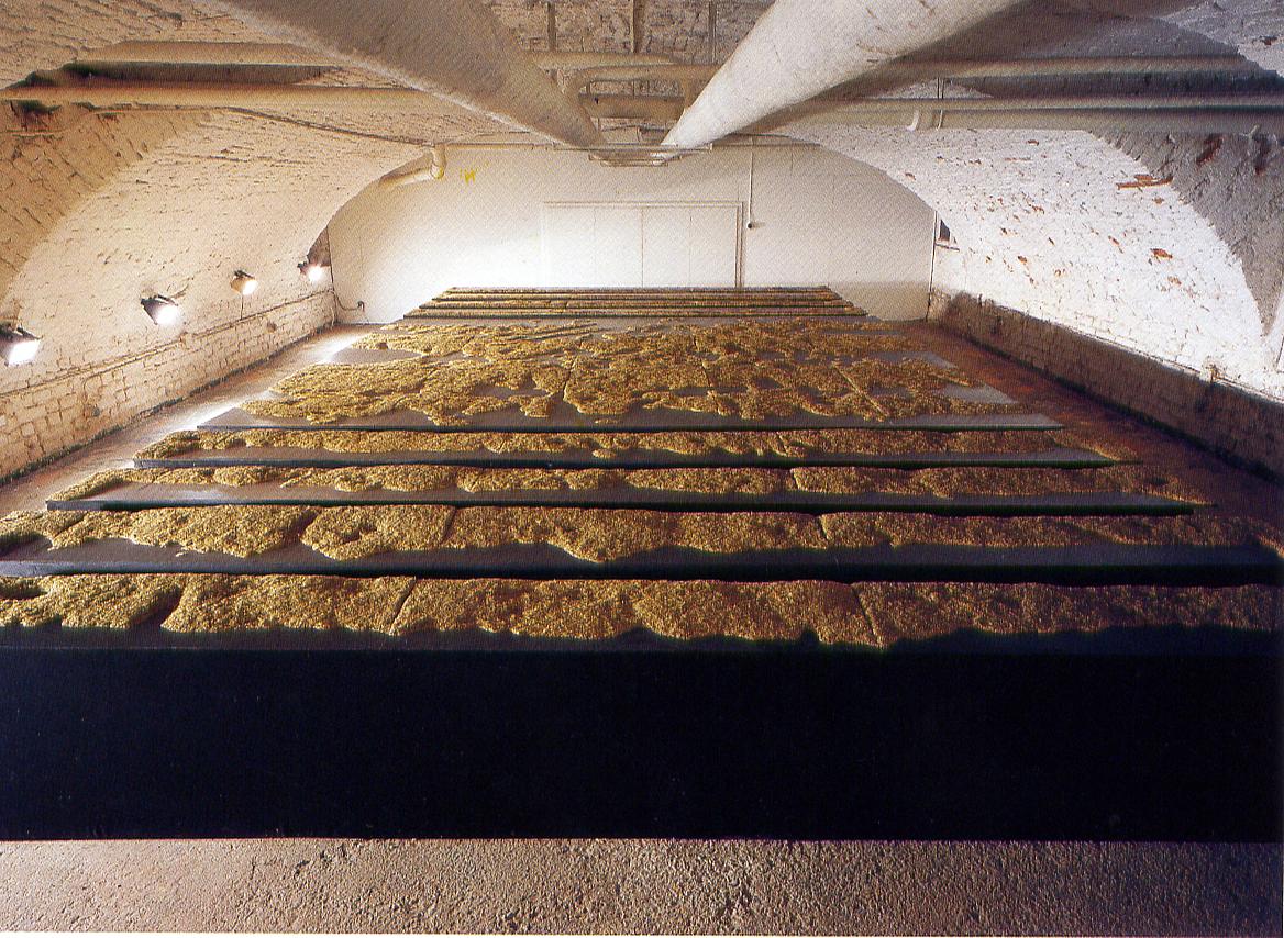 Salvatore Falci, 1990, Erba Ponte Sant'Eufemia, galleria Casoli, Milano