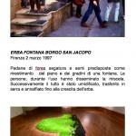 Salvatore Falci, 1997, Erba Fontana Borgo San Jacopo, Firenze, 2 marzo 1997, scheda