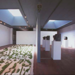Salvatore Falci, 1998, Installazione Galleria I.A.S.K.A. Kellerberrin, Perth , West Ausrtralia, Erba e Silent Communication.